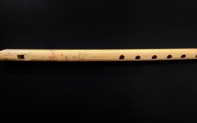 Posiciones de la flauta de Carrizo Tabasco